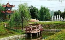 万博manbetx官网网页版园林园艺