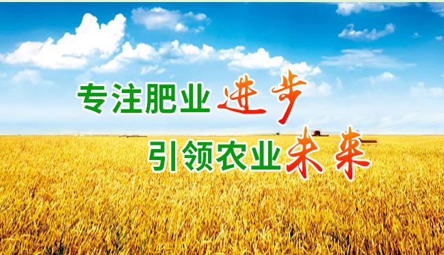 万博manbetx官网网页版肥业网