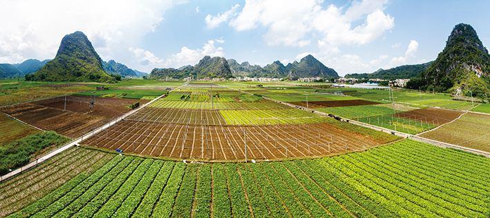 特色农业网